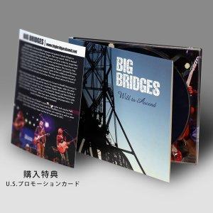 画像3: Big Bridges|Will to Ascend (輸入盤)