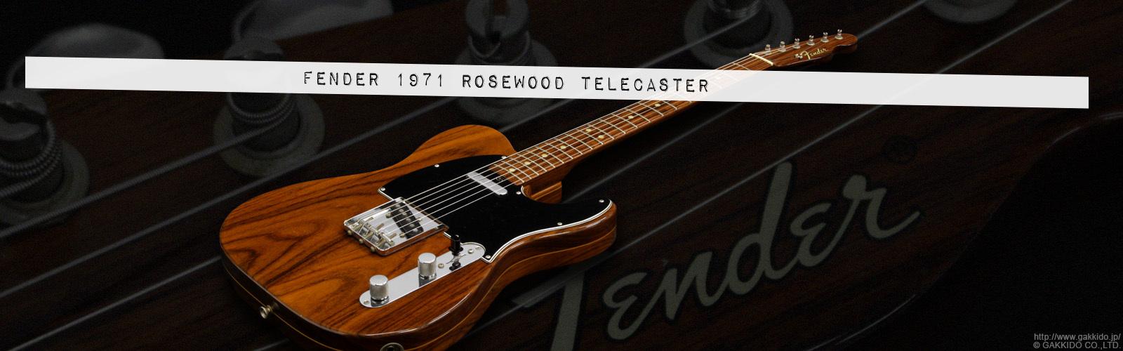 Fender 1971 Rosewood Telecaster [中古品]