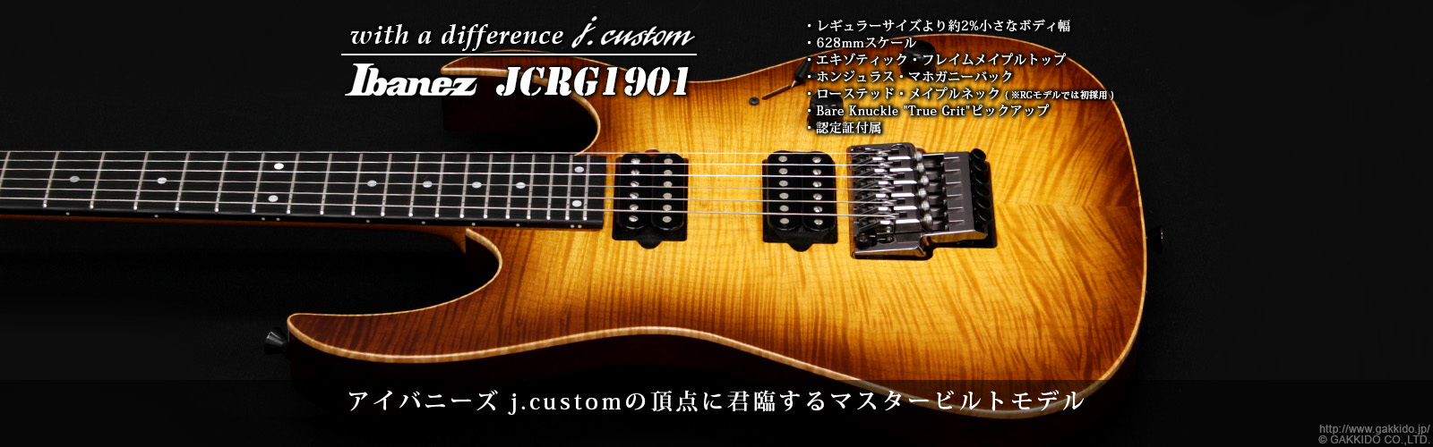 "Ibanez JCRG1901 VV ""with a difference j.custom"" [Vintage Violin] [限定モデル]"